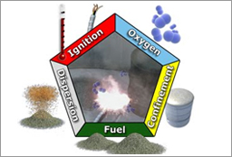 Combustible Dust Pentagon