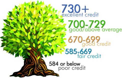 How To Raise Your Credit Score By 100 Points In 45 Days
