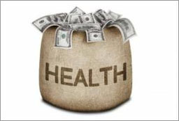 health money bag